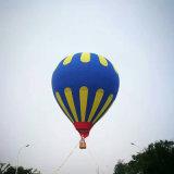 Ga bezienswaardigheden bezoekend de Vliegende Ballon van de Hete Lucht van de Reis van het Huwelijk van de Concurrentie