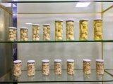 Funghi inscatolati dell'alimento inscatolato