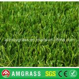 Mini campo di calcio ed erba sintetica per il giardino