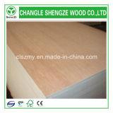Preiswertes Bintangor Plywood für Furniture und Decoration