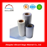 PVC Strong Coated Overlay Film 600 Strong Type Overlay avec Glue pour Making Cards