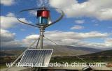 a turbina vertical do gerador de vento 600W podia ter recursos para o vento 65m/S