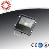 20W Projecteur à LED IP65 avec chipset Bridgelux+signifier bien conducteur