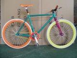 Приятный внешний вид закрепите шестерню велосипед