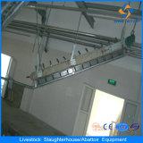 Fornitore automatico della macchina di macello del maiale dell'acciaio inossidabile della Cina