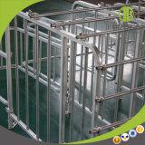 Stalle de porc de gestation de matériel de porc pour le matériel de ferme de porc
