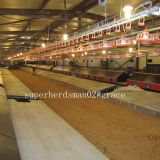 Geflügel-Brüter-landwirtschaftliche Maschinen für Muttergesellschaft-Bratrost