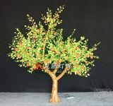 Projecto de construção levou as luzes de árvores de fruto (PGQ2400)