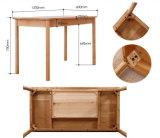 La Vente chaude Étude de l'ordinateur de bureau en bois de frêne Table Salle d'étude Style Simple Desk (M-X2011)