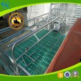 Landwirtschaft Rahmen-des werfenden Gießbetts für Säen-Schweine