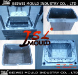Storage di plastica Container con Hinged Lid Mould