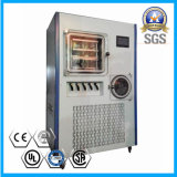 China High Quality Fruit Freeze Drying Equipment