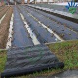 Tissu de paillage noir non tissé de lutte contre les mauvaises herbes de film/de pp Spunbond/Nonwoven de noir