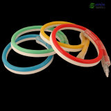 Câble au Néon de 12V/24V/110V/230V DEL avec la Jupe Colorifique