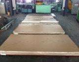 Placa inoxidable laminada en caliente de la hoja de acero (304L)