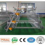 Sistema automático da limpeza do estrume da fábrica da gaiola da galinha
