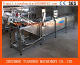 Chaîne de production de lavage de coupe en dés de chou végétal automatique à haute production Tsxq-50
