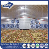 Différents types de ferme avicole préfabriquée pour 10000-30000 Poulets