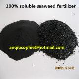 Formule de flocons organiques extrait d'algues engrais