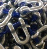 私達を造るタイプG210 Deeのタイプアンカー手錠