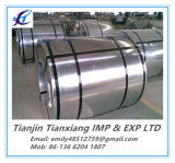 Блесточка ASTM A653 Zero минимальная Regualar гальванизировала стальную катушку