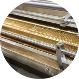 Máquina de ondulação reciclável automática de barras de plástico Ruian (DHJBJ-120)