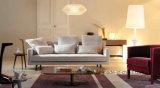 Sofá de China, mobília da sala de visitas, qualidade de preço de fábrica boa