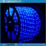 Luz LED Flexible CC12V
