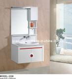 Vanité de salle de bains (AM-2306)