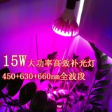 Planta de luz LED