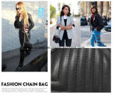 Commercio all'ingrosso Chain della Cina della borsa del progettista delle signore imbottito prezzo poco costoso caldo di vendita