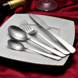 18/10 vaisselle plate d'acier inoxydable pour le détail