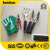 комплект инструмента сада 5PCS при ручка TPR сделанная в Китае