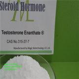 hormona esteroide sin procesar del polvo de Enanthate de la testosterona 100g para el edificio del músculo