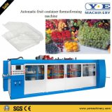 La Comida de plástico automática de contenedor de la fruta de la máquina de termoformado
