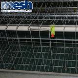 Venta caliente granja avícola Cage