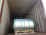 Bobinas principais de Hgi da qualidade, metal baixo de bobinas de PPGI/chapas de aço galvanizadas