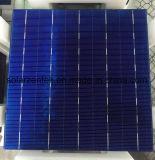 4개의 공통로 태양 전지 급료