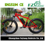 26 '' Hot Selling Fat Tire Electric Bike with Disc Brake