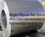 La qualité principale a laminé à froid la bobine de tôle d'acier (SPCC SPCD SPCE)