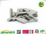 Magneti su ordinazione del AlNiCo, magneti permanenti del AlNiCo