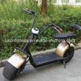 2018 تصميم جديدة درّاجة كهربائيّة مع [فكتوري بريس]