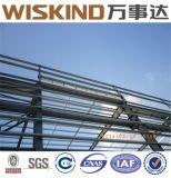 Estructura de acero de Weided para el edificio Structure-09
