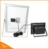 A iluminação externa 30 PCS Soalr LED Wall Garden Lawn Luz com controle remoto