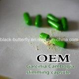 Vert foncé OEM & Light Slimming Capsules pilule la diète de perte de poids