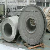 L304/316SUS bobinas de acero inoxidable 1.4401 en la caja del filtro de cartucho