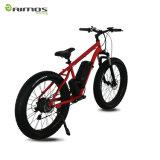 26 elektrisches Fahrrad des Zoll-250W Aimos