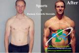 Supertest 450 mischendes injizierbares flüssiges Supertest für Bodybuilding