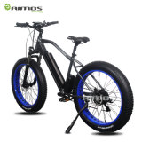 Vélo électrique 1000W de grosse montagne du pneu AMS-Tde-08
