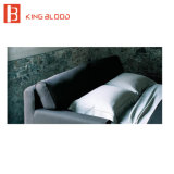 Dorminhoco do sofá de Loveseat 2 Seater para jogos da mobília da sala de visitas